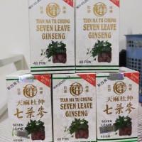 Obat Herbal seven leave ginseng
