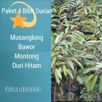 Paket 4 Bibit Durian Musangking-Bawor-Montong-Duri Hitam