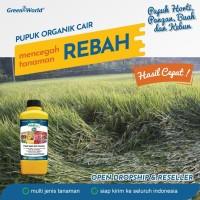 CEGAH PADI REBAH!!! PUPUK PADI ORGANIK GREENWORLD MAGICgro G6