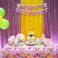 Set Perlengkapan Pesta Ulang Tahun Karakter Tinker Bell