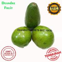 Buah Alpukat Mentega Premium Avocado 1kg TERMURAH DIJAMIN Avocadron