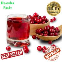 PROMO MURAH Jus Cranberry 1 Liter Juice Cranberry Buah Segar Fresh