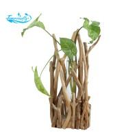 1 Set Glass Vase Tube Shape Clear Flower Bottle With Wooden Shelf