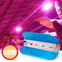 Led Grow Light Hydroponic 50W 220V Lampu Tanaman Hidroponik Waterproof
