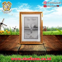Frame Piagam Sertifikat Ukuran A4 - Star Farm