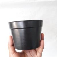 pot hitam 10, pot murah, pot kaktus, pot promo
