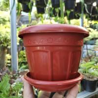 Pot kecil Coklat SL 7514 plus tatakan / pot plastik mini
