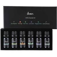 Premium Fragrance Essential Oil Aromatherapy 6 in 1 eucalyptus orange
