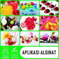 Alginat / Sodium Alginate / Alginate Spherification 500g
