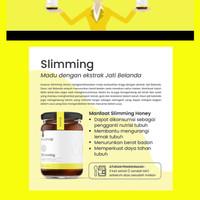 essenzo slimming honey penurun berat badan diet pelangsing herbal madu