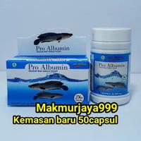 Pro Albumin ikan gabus asli...isi 50 capsul vita albumin
