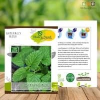 Benih-Bibit Herba Lemon Balm (Daun Mint)