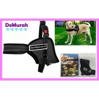 Sports Dog Harness Set / Rompi Anjing Sporty