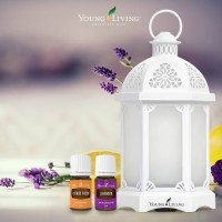 Lantern Diffuser Young Living Aromatherapy