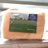 Oldenburger mozarella cheese 250gr product by germany
