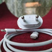 charger iphone fast charging original 100% lightning to C