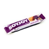 Soyjoy Fruit Soy Bar Raisin Peanut 30gr - Snack Kedelai Kacang Kismis