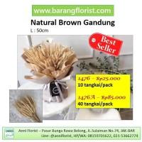 Natural Brown Gandung (1476) 10 tangkai/pack, gandum kering, bunga