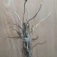 Hiasan akar kayu Konsep Wabi Sabi