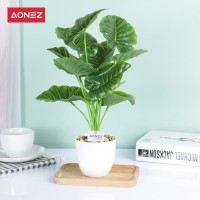 Aonez Bunga Simulasi Bunga Buatan 12 tangkai Daun Penyu dengan pot