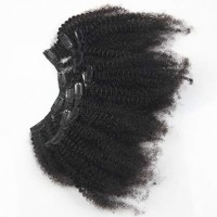 Afro Kinky Curly Clip in Human Hair Extensions Brazilian Curly Clips H