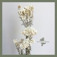 Dried Rice Flower Bunga Kering Asli Tangkai Hiasan Dekorasi Buket