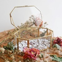 Hepburn Terrarium / Beauty Case / Kotak Kaca / Wedding Ring Bearer