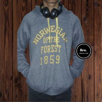 A060 - Ready Hoodie Norwegian Of the Forest grey unisex