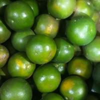 Jeruk Pontianak / Jeruk Peras ( 500 Gram )