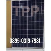 PROMO Panel Surya Poly 100 WP 100WP Solar Panel