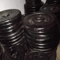 Iron Plate Gymex 25 Kg