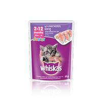 Makanan kucing whiskas junior pouch/sachet 85gr