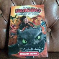 Dragons Riders of Berk Volume One : Dragon Down