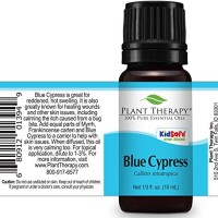 Plant Therapy Blue Cypress Essential Oil 10 mL (1/3 oz) 100% Pure, Und