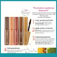 Bs ETUDE HOUSE Color My Brows 4.5g 5