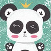 Petit Colage - 24-Pcs / Puzzle Lantai 24Pcs / Puzzle Mainan Edukasi