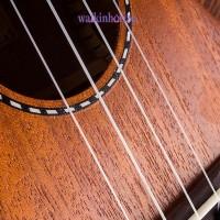 WA 4Pcs / Set Senar Nylon Pengganti Warna Putih untuk Gitar Ukulele