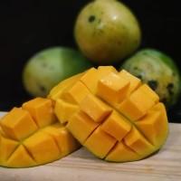 Promo mangga harum manis super matang pohon