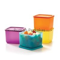 Tupperware Medium Summer 2pcs Fresh - Kotak makan serbaguna