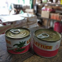 TTS Pickled Lettuce acar sawi chaisim kaleng