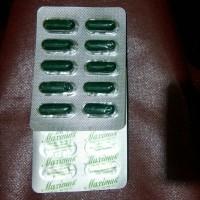 maximus diet herbal