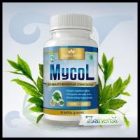 Banting Harga Mycol | Herbal Penyembuh Kolestrol Tinggi Atau Lemak