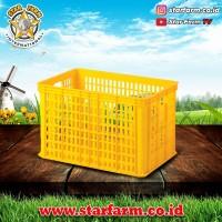 Keranjang Kotak Kuning 2006 - Star Farm