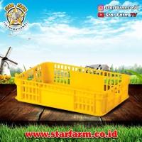 Keranjang Kotak Kuning 2002 - Star Farm