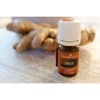 Young Living Oil Ginger