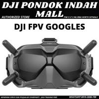 DJI FVP Goggles