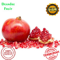 PROMO MURAH Buah Delima Merah import JUMBO DIJAMIN DIBAWAH PASARAN