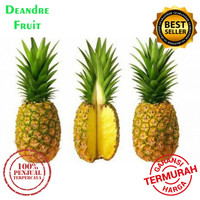 PROMO MURAH Nanas Madu SUPER JUMBO 1pcs uk besar Honey Pineapple