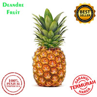 PROMO MURAH Nanas Madu SUPER 1pcs / Honey Pineapple DIJAMIN MURAH