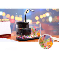 Desktop Aquarium Mini Fish Tank with Running Water EECOO USB Lileng